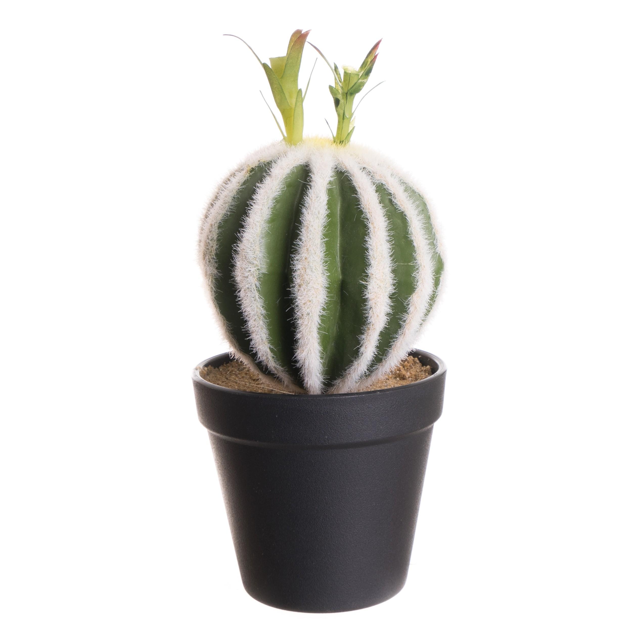 Cactus Artificiel en Pot Plastique