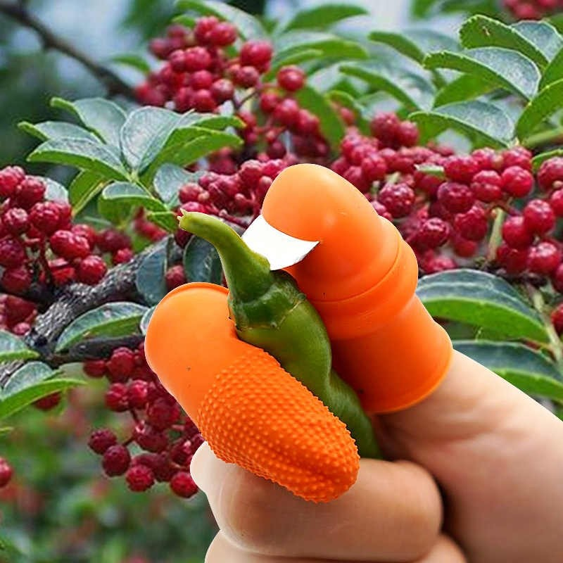 Couteau De Légumes Multifonction