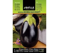 Sachet de graines de legumes AUBERGINE
