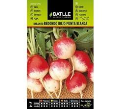 Sachet de graines de legumes RADIS rond