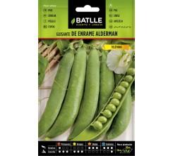 Sachet de graines de legumes POIS DE ENRAME ALDERMAN 35G