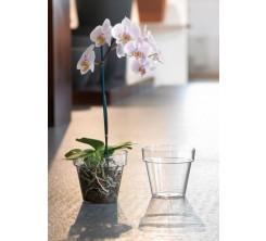 Pot de Fleur en Plastique transparent ronde 25cm