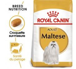 Croquettes Chien Bichon Maltais Adult 1,5kg