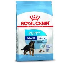 Croquettes Chien Maxi Puppy 4 kg