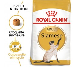 Croquettes Chat Siamois  Adult 2 kg